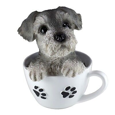 "Schnauzer Puppy In A Tea Cup Dog Figurine Resin 5.5"" High New In Box!"