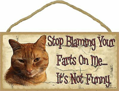 Orange Tabby CAT Stop Blaming Your Farts On Me Wood SIGN Plaque USA Made