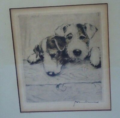 antique SEALYHAM FOX TERRIER puppies hand colored etching pencil signed
