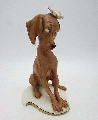 GIUSEPPE CAPPE Figurine Puzzled POINTER DOG with BUTTERFLY Capodimonte