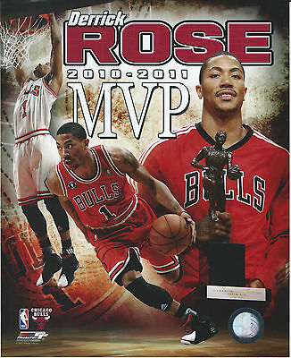 0549170d576 Derrick Rose Chicago Bulls 8 X 10 Photo With Ultra Pro Toploader