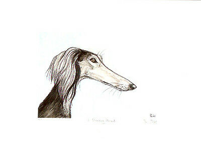 Saluki Limited Edition Print by UK Artist Elle Wilson A Glancing Moment