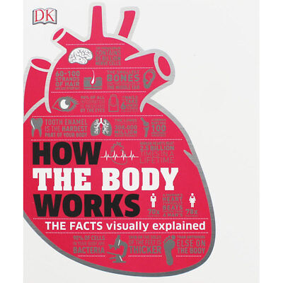 How The Body Works by DK (Paperback), Non Fiction Books, Brand New