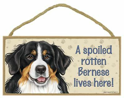 Spoiled Rotten Bernese Mountain Dog 5 x 10 Wood SIGN Plaque USA Made