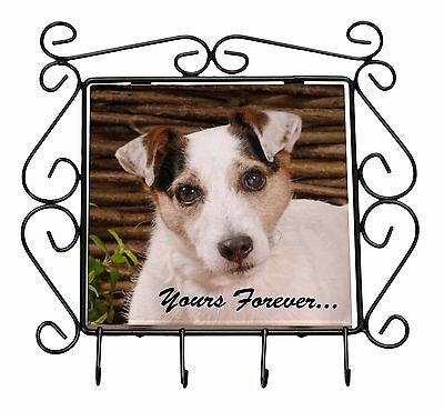 Jack Russell Terrier 'Yours Forever' Wrought Iron Key Holder Hooks C, AD-JR56yKH