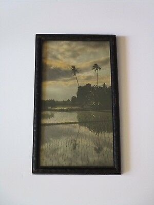 Reflections Antique Photograph Hawaii Hand Colored Sunset Scene Vintage Tropical