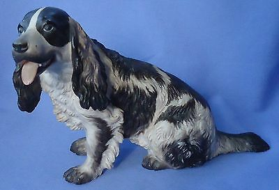 1930 Liver Color English Setter Springer Spaniel Rosenthal Dog Germany 9""