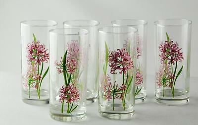 Transparent With Flowers Glass 1600 ML*270 ML 1 Pot + 6 Cups 7 PCS Cup