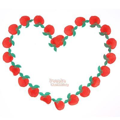 Fruits Applique Clothing Embroidery Patch Sticker Iron On Sew Fabric Cloth DIY