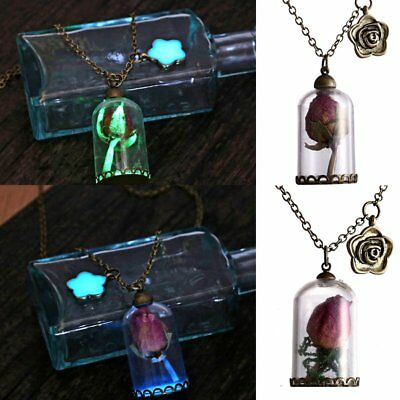 Glow In The Dark Dried Flower Rose Glass Bottle Pendant Necklace Chain Jewelry