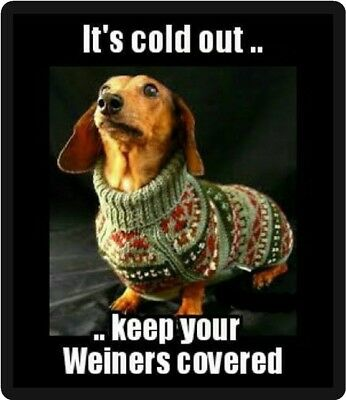 Funny Dog Humor Dachshund It's Cold Outside Refrigerator Magnet