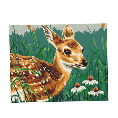 Acrylic Paint By Number Kit DIY Painting Canvas Picture Home Decor Sika deer