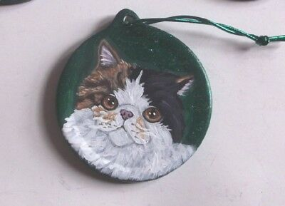 Exotic Shorthair Cat Hand Painted Ceramic Christmas Ornament Decoration