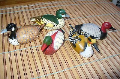 Beautiful SET OF 5 Vintage  DUCKs  Water Fowl- VERY DETAILED