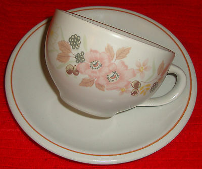Hedge Rose from Boots Tea Cup and Saucer - Last One
