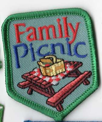 Cub Boy Scout Girl Scouts Embroidered Fun Patch Badge~Family Picnic