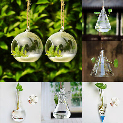 Clear Glass Flower Hanging Vase Planter Terrarium Container Home Office Decor