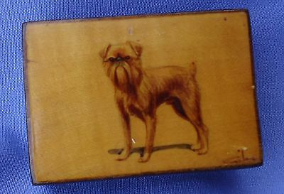 Antique Hand Painted Brussels Griffon  Dog Mauchline Wear Match Box Holder