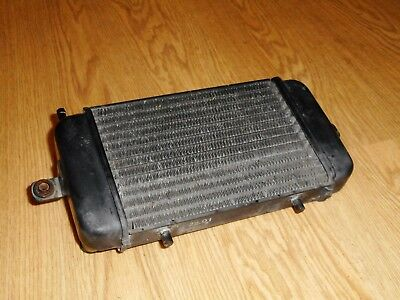 Bmw C1 125/200 Oem Genuine Radiator Rad Water Cooled 2000/2001/2002