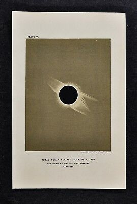 1897 Astronomy Print Total Solar Eclipse Corona July 29 1878 Lithograph Star Map