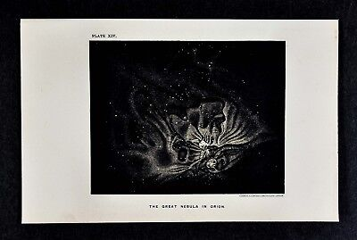 1897 Astronomy Map - The Great Nebula in Orion - Lithograph Star Chart Cluster