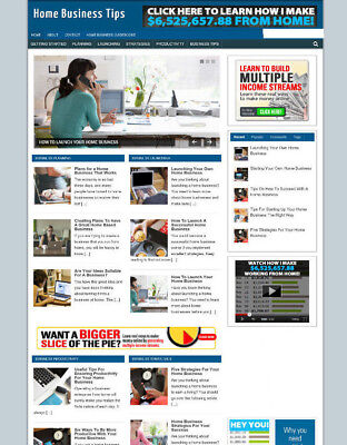 Home Business Advice Uk Affiliate Store / Website + New Domain Name & Hosting