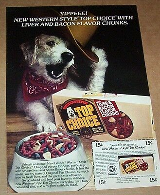 1977 ad page - Gaines Top Choice Cute Western Cowboy hat dog Vintage PRINT AD