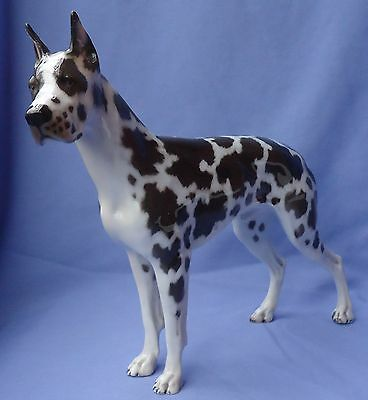 1930  Harlequin Great Dane Rosenthal Germany 12""