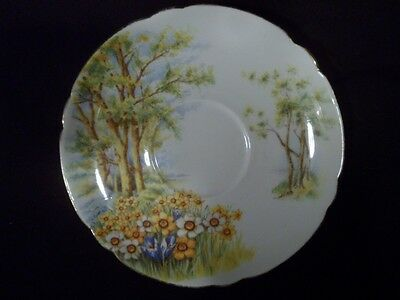Shelley Saucer, Pattern Daffodil Time #13370, Marked, Excellent Condition