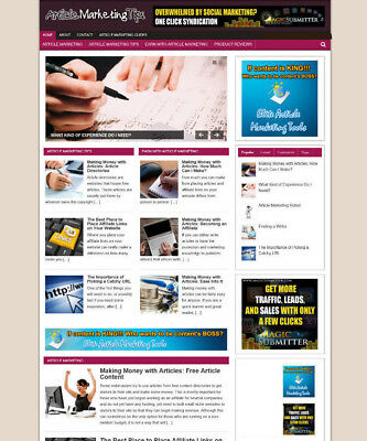 Article Marketing Store Website With Affiliate Options And New Free Domain