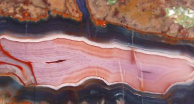 Rock slab PURPLE PASSION agate - superb color!!!