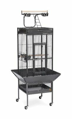 New Prevue Pet Products Wrought Iron Select Bird Cage Black Hammertone 3151Blk