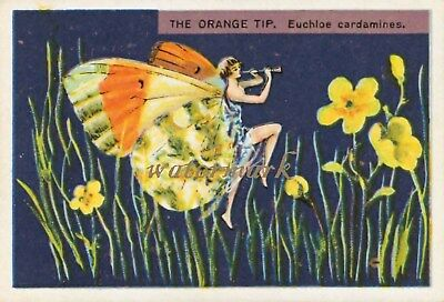 Antique Vintage Trade Card Flapper Butterfly Moth Girls Fabric Quilt Block 9034