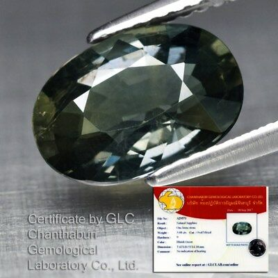 Big! 3.08ct 10.5x7.4mm Oval Natural Unheated Yellowish Green Sapphire *Certified