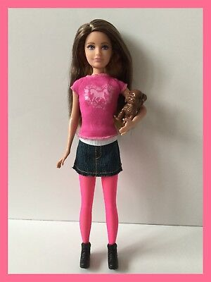 Barbie Collector Barbie Skipper Fashionistas Skipper New Style