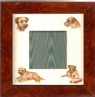 Border Terrier Frame Art by Bryn Parry
