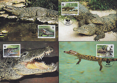 052840 WWF Reptilien Reptils Maximum Card ´s