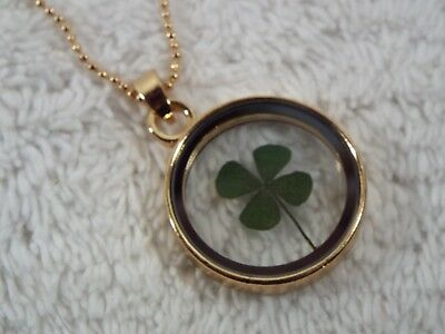 Goldtone Encased Dried Four Leaf Clover Cloverleaf Pendant Necklace (A31)
