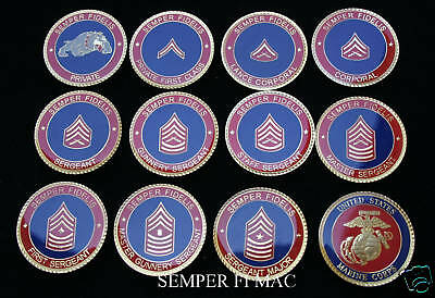 # Us Marines Enlisted Challenge 11 Coin Set Rank Mcrd Graduation Promotion Mr