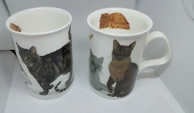Cats Galore Mug  Roy Kirkham Fine Bone China  Brand New 2005