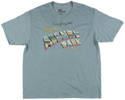 Bruce Springsteen Greetings from Asbury Park T-Shirt Mens Heather Turquoise