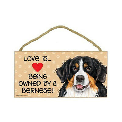 Love is Being Owned By a BERNESE Mountaib Dog 5 x 10 Wood SIGN Plaque USA Made