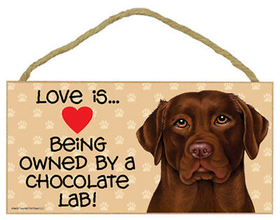 Love is Being Owned By a Chocolate Lab Dog 5 x 10 Wood SIGN Plaque USA Made