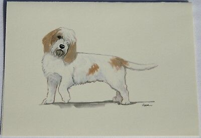 Petit Basset Griffon Vendeen Dog Zeppa Studios Fur Children Note Cards Set of 8