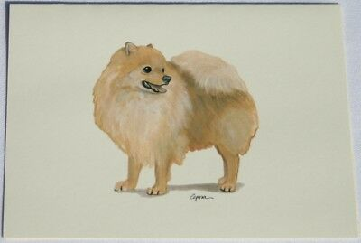 Pomeranian Dog Zeppa Studios Fur Children Note Cards Set of 8