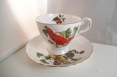 Vintage Royal Chelsea Bone China Audobon Birds Summer Tanager Cup & Saucer