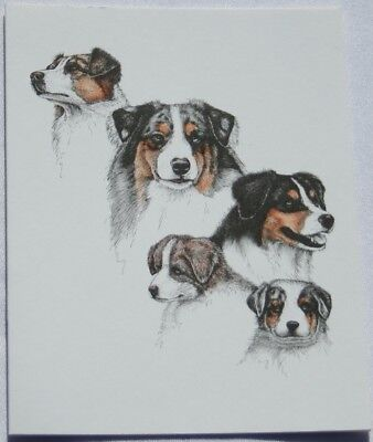Australian Shepherd Dog Laura Rogers Pet Notes Notecard Set of 10