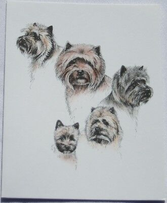 Cairn Terrier Dog Laura Rogers Pet Notes Notecard Set of 10
