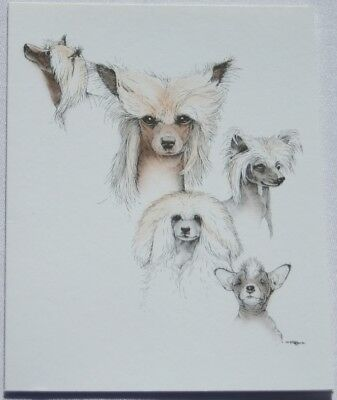 Chinese Crested Dog Laura Rogers Pet Notes Notecard Set of 10