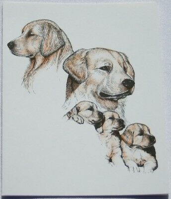 Golden Retriever Dog Laura Rogers Pet Notes Notecard Set of 10